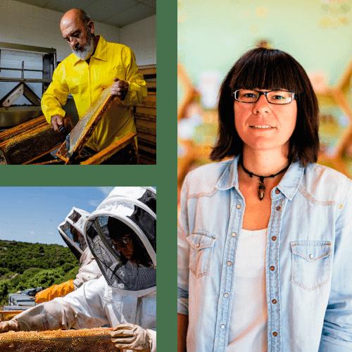 apicultores-artesanos-miel-min